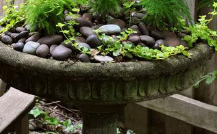 3 beautiful birdbath planters, gardening, outdoor living, pets animals, This birdbath is in a shaded area