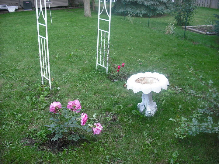 Oh look .....there is my birdbath I used to do my succalent garden and posted pics of.....had lots of birds at the house but not here so that is why I transformed it
