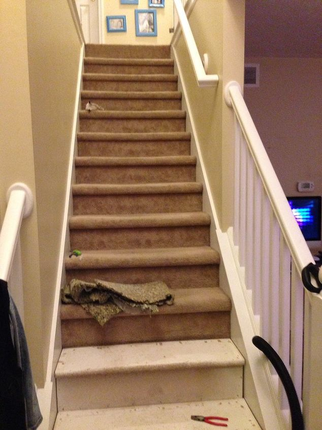 q stair remodel, diy, flooring, stairs, When I started pulling up the carpet off the stairs Yuck