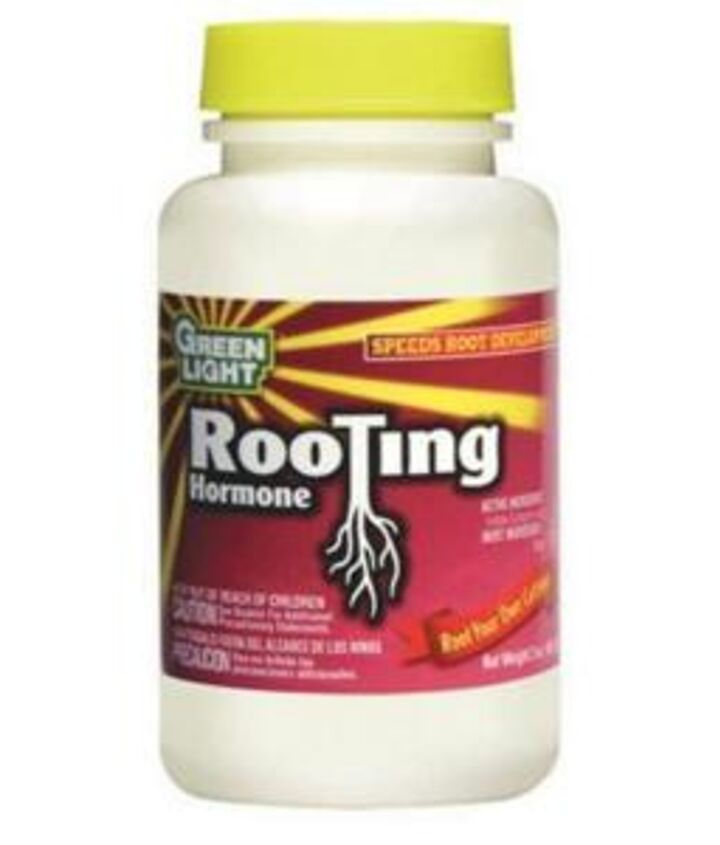 Rooting Hormone Powder