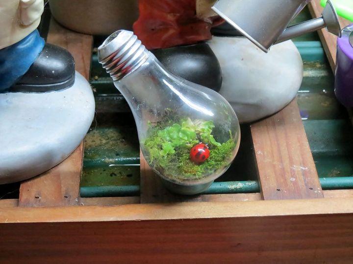 Moss terrarium in a light bulb