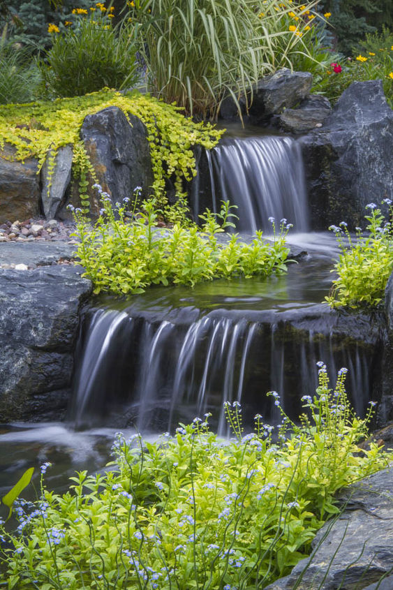 A close-up of the pond's waterfall; critical for aerating the water.