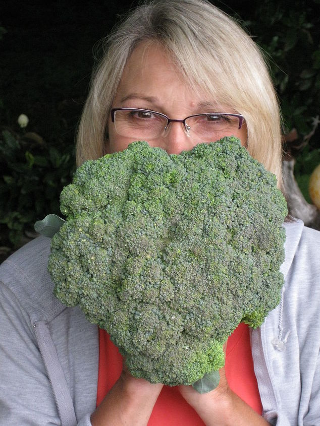 Heart broccoli