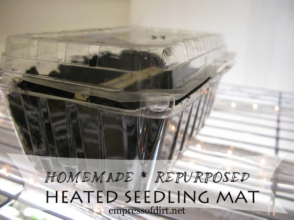want a seedling heating mat you may already own one, container gardening, gardening, repurposing upcycling, A frugal homemade alternative to good but expensive seedling heating mats