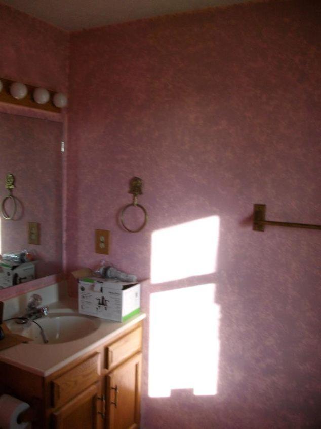my half bath makeover, bathroom ideas, home decor, Before ewww