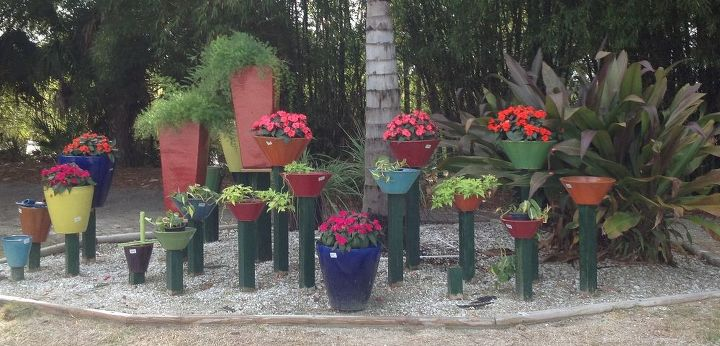 adding color and texture to your garden, flowers, gardening