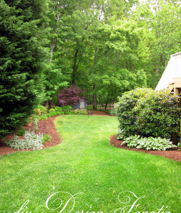 After the long hot summer this year, our yard does not look this good!