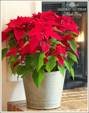 my home decorated for christmas, christmas decorations, seasonal holiday decor