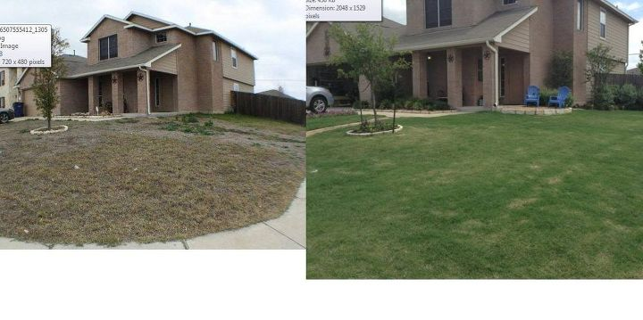 Front Yard - Before (Jan 2012) and After (June 2013)