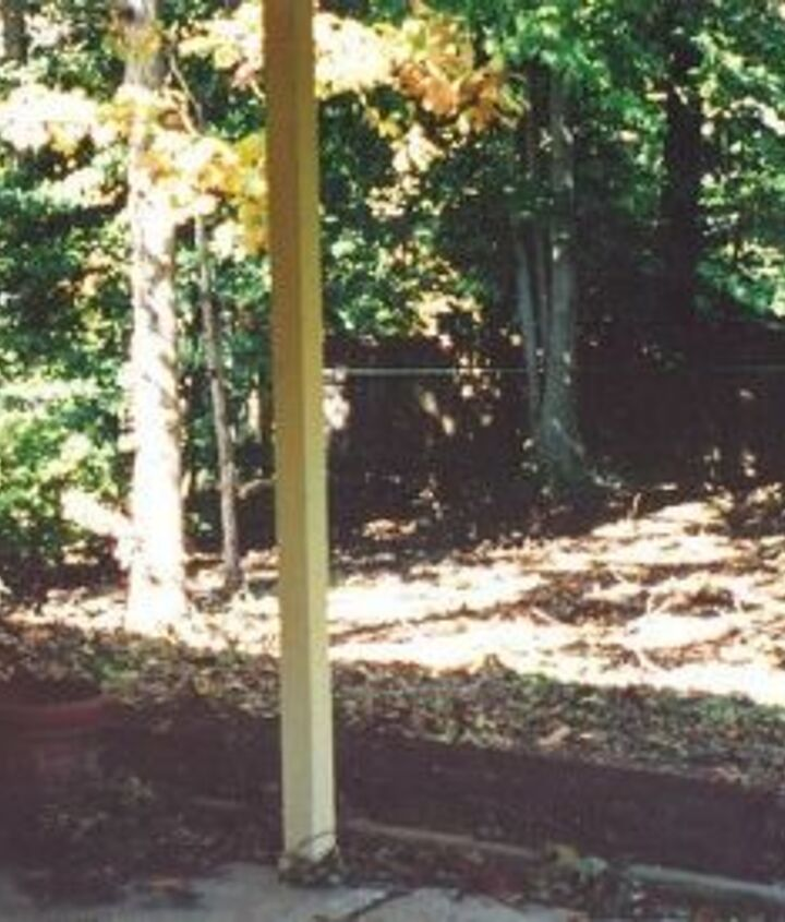 This was our yard when we moved in in 2003.  It took us years to fix up the yard and we painted the shed a barn red temporarily.