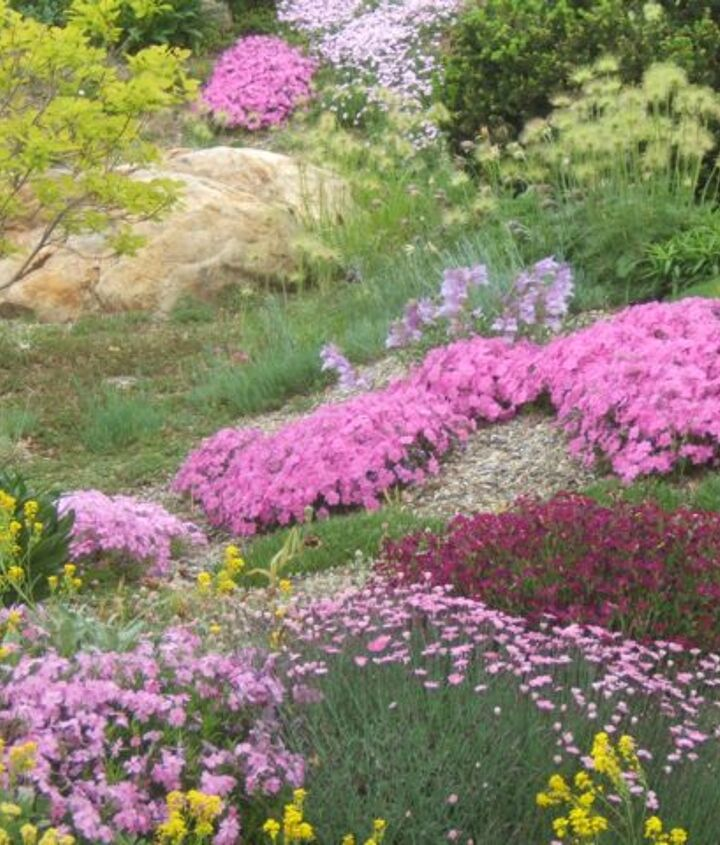 Rock Gardens can be very colourful, especially in the spring. (Elysium Gardens)