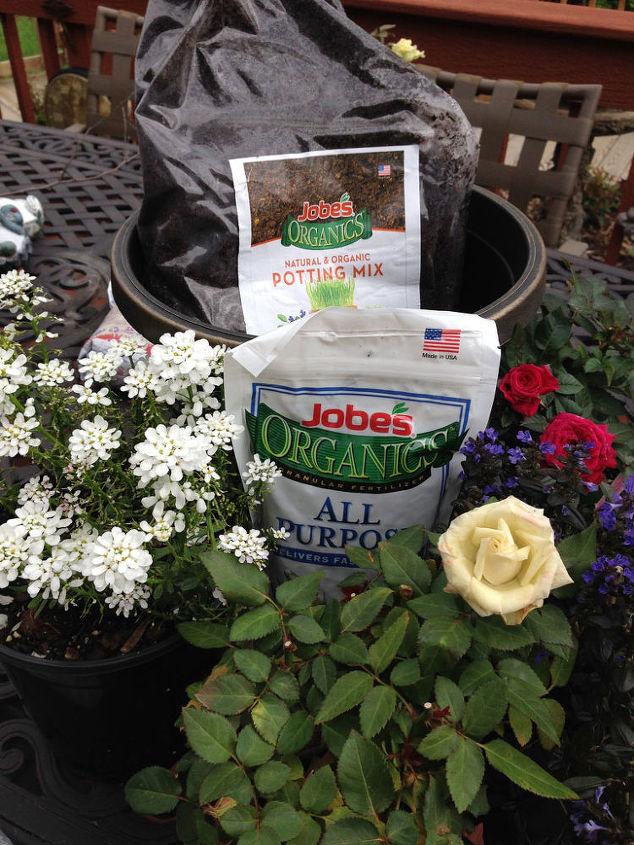 JI used Jobes organic soil and fertilizer