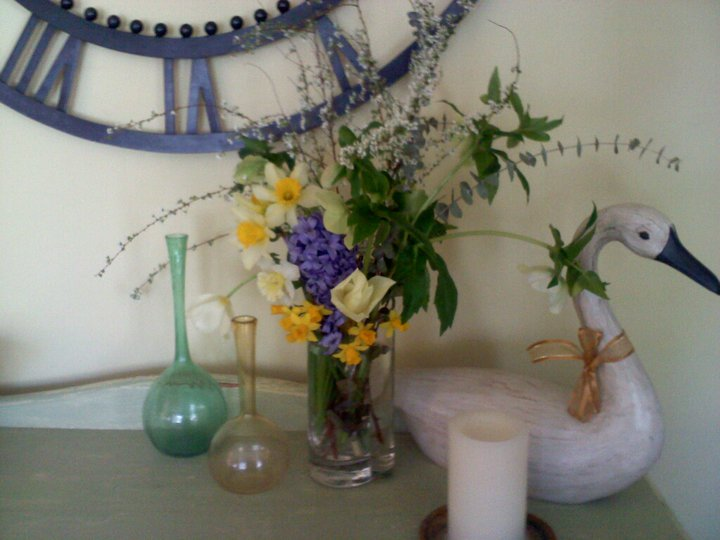 tips on transplanting tulips and daffodils, flowers, gardening, spring flower arrangement from the yard February