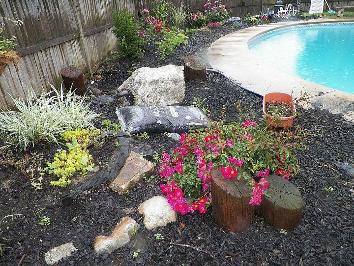 mulch in pool help, gardening, landscape, pool designs