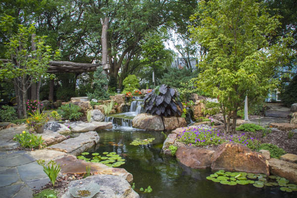 An ecosystem pond sets the stage for peace and relaxation.
