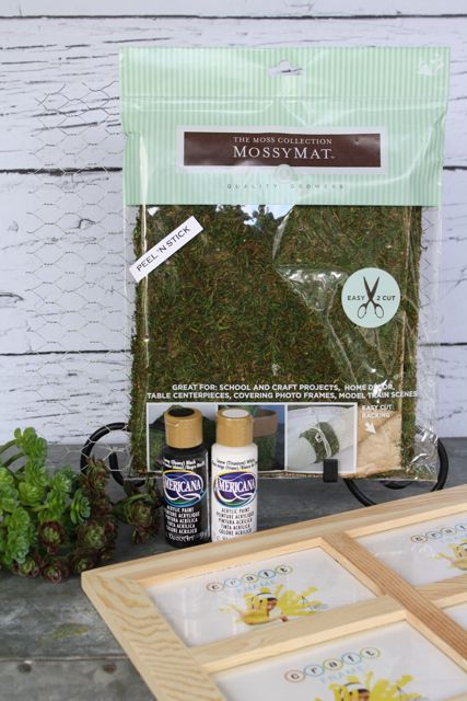 Supplies: Frame, Mossy Mat, Americana Paint in Black and White, Faux Succulents and Chicken Wire.