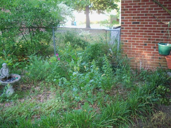 corner garden bed cleaned out. will post pics update 2013