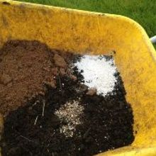 make your own potting mix, gardening, In this picture Compost on the bottom peat to the left perlite to the right handful of fertilizer to the front