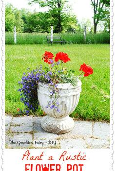 my favorite flower pot combination, flowers, gardening