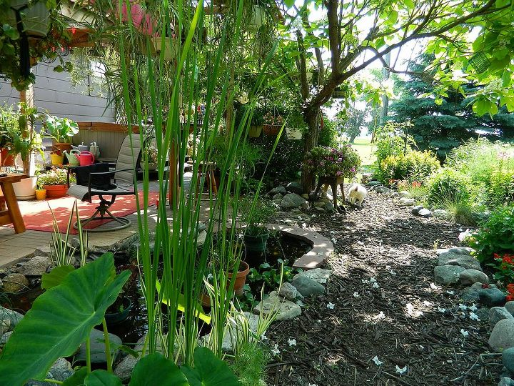 gardening in mn could use some more heat, gardening, outdoor living