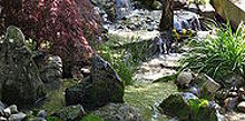 water features waterfalls, outdoor living, ponds water features, Small and detailed pondless waterfalls in a tight space Learn more about our waterfall construction click on this link