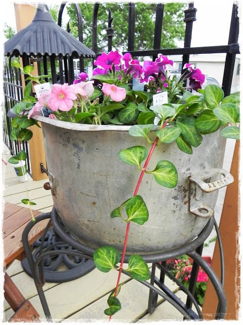 an industrial mixing bowel makes a great planter too.
