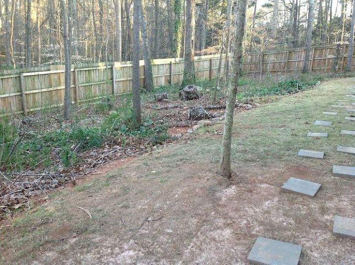 can these 2 trees be safely moved, gardening, landscape