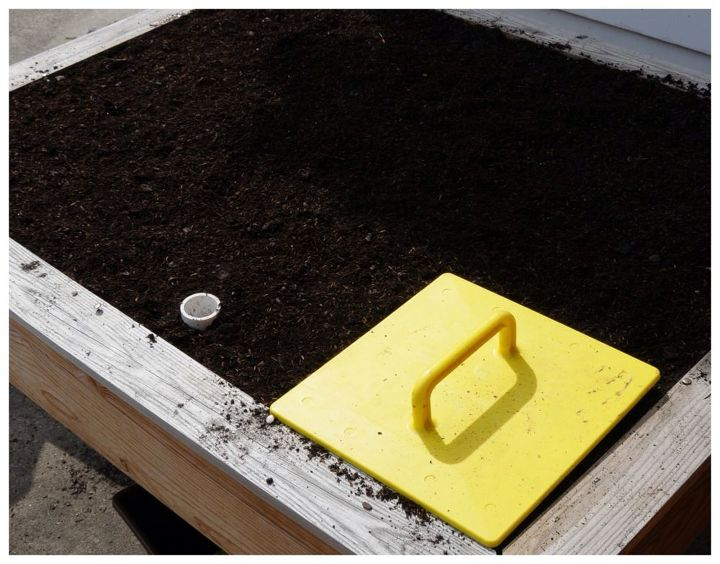2. Garden Stamp your beds. Keep your holes shallow. (Click See 6 More to the left for the rest of the post)