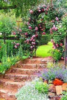 underberg large farm gardens, gardening, landscape