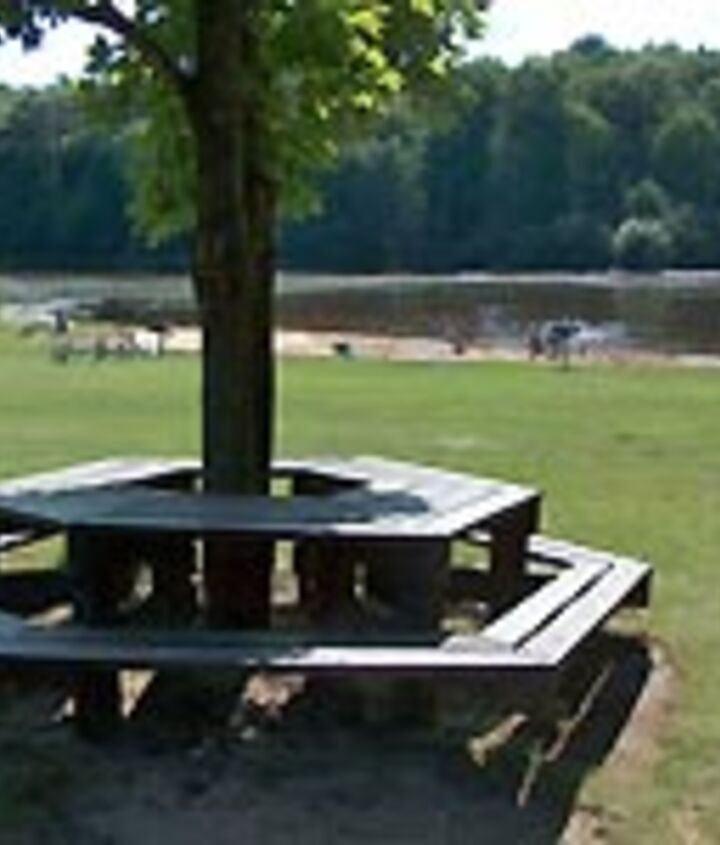 Table around a tree with bench