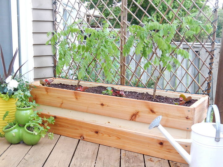 plant for privacy diy wood container, container gardening, crafts, gardening, woodworking projects, DIY Planter for Privacy