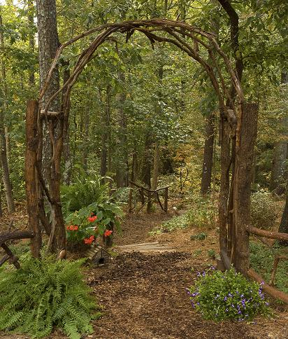 The Arbor is also built with fallen tree and muscadine vines pulled from the trees.