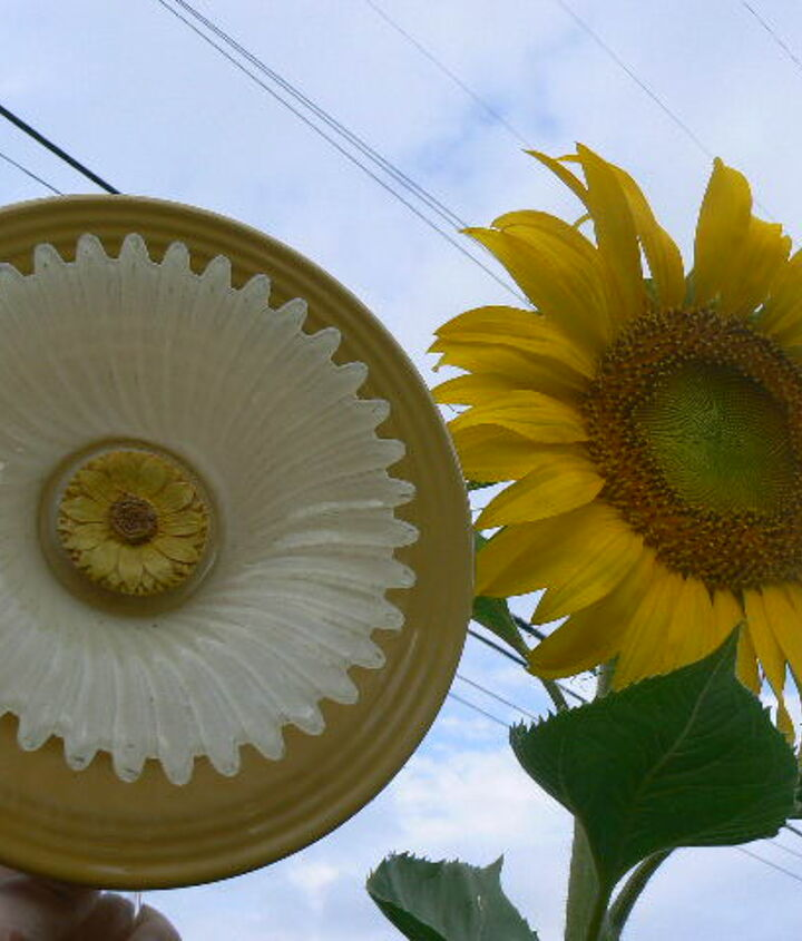 My inspiration for my newest glass plate flower.