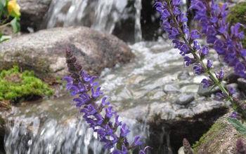 Pondless Waterfall-Backyard makeover, NH