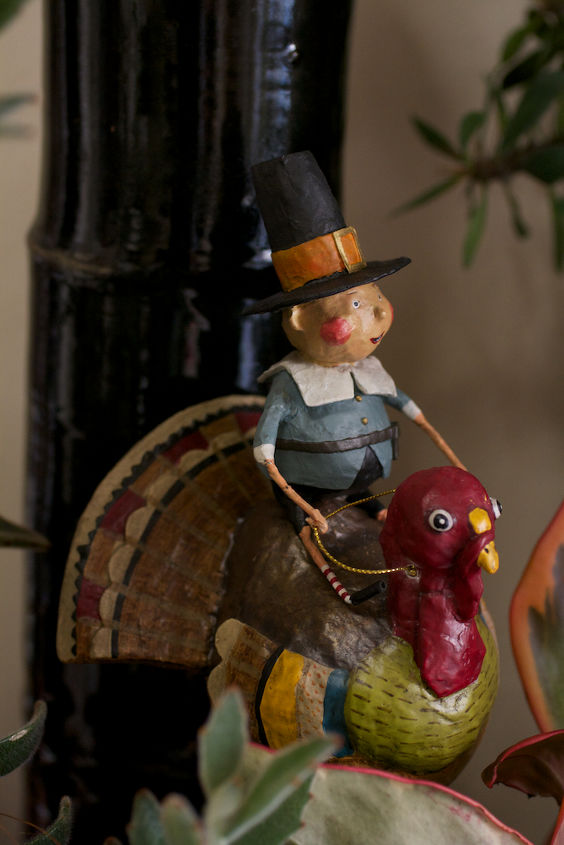 Pilgrim boy rides his turkey in my succulent garden.