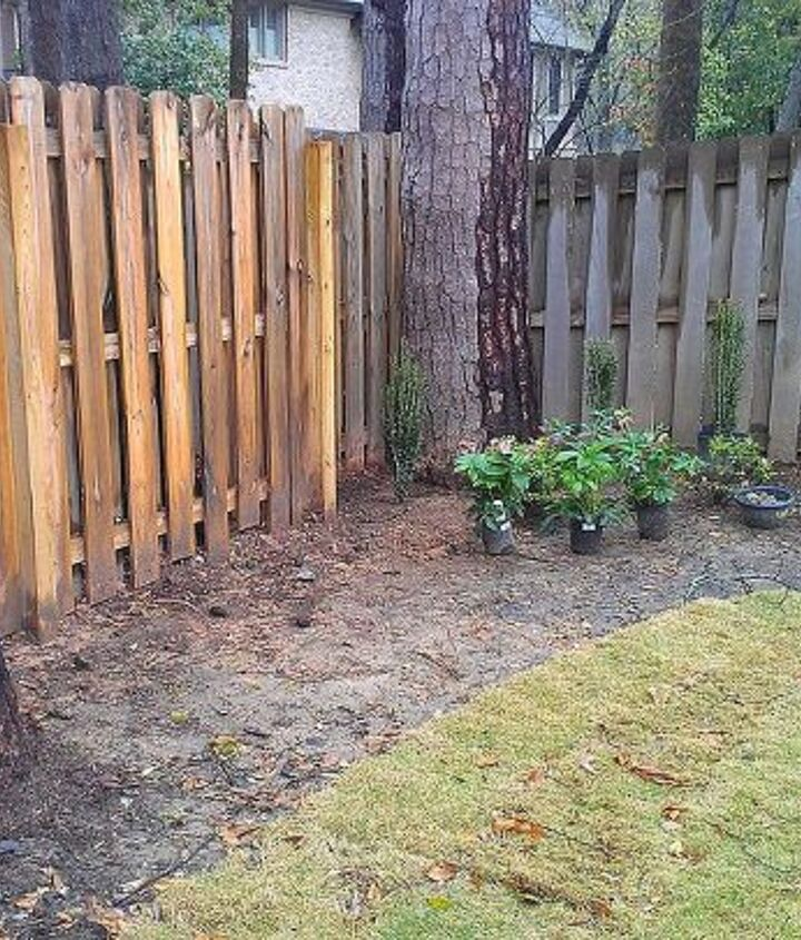 q ideas for landscaping along a backyard fence, flowers, gardening, landscape, perennial
