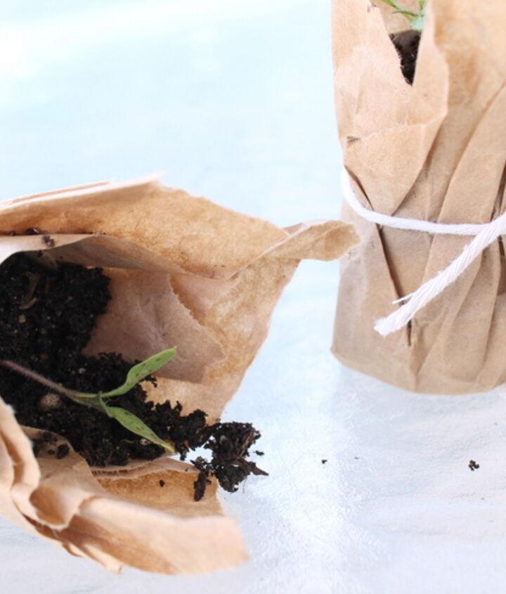 compostable brown paper seedling pots, gardening