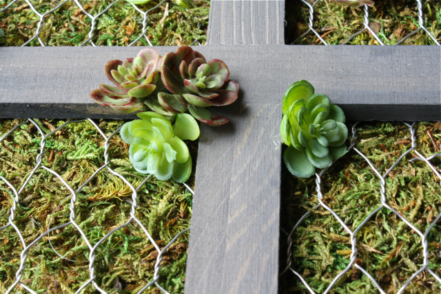 Cut moss to fit in frames. Then cut chicken wire to fit in frame and glue succulents on frame.