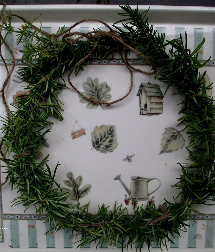 Finished wreath ready for a burlap bow.http://ourfairfieldhomeandgarden.com/diy-project-make-a-fresh-rosemary-wreath/