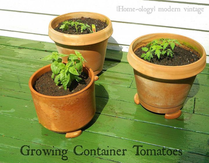 growing container tomatoes in six easy steps, container gardening, gardening, Your list includes pots 12 in diameter or larger a used dryer sheet potting soil compost slow release fertilizer optional tomatoes