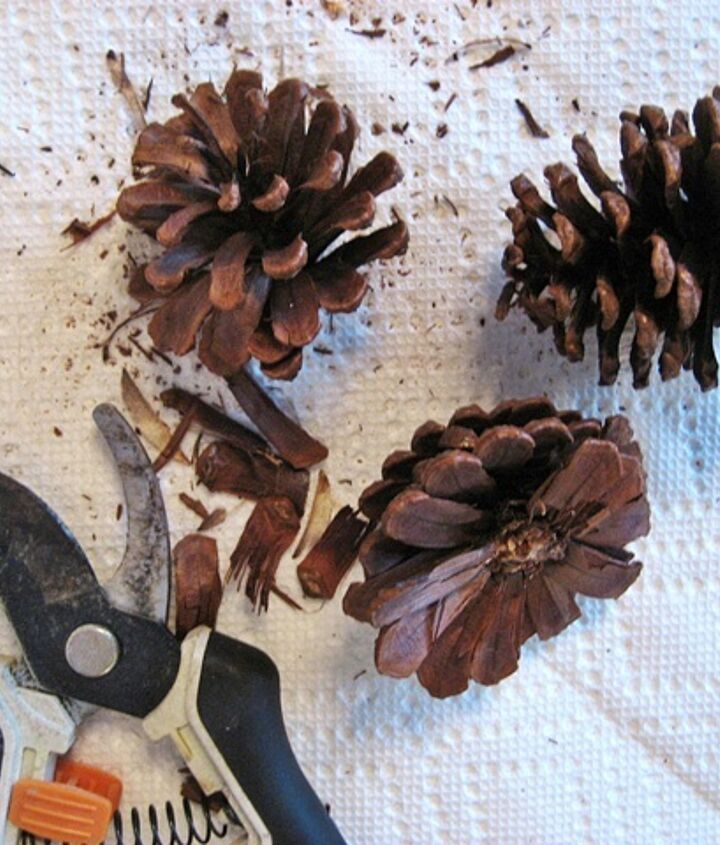Instructions for making pine cone roses are on my blog.