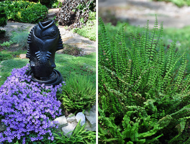 A close up of the mounded focal point of the garden in the third image.