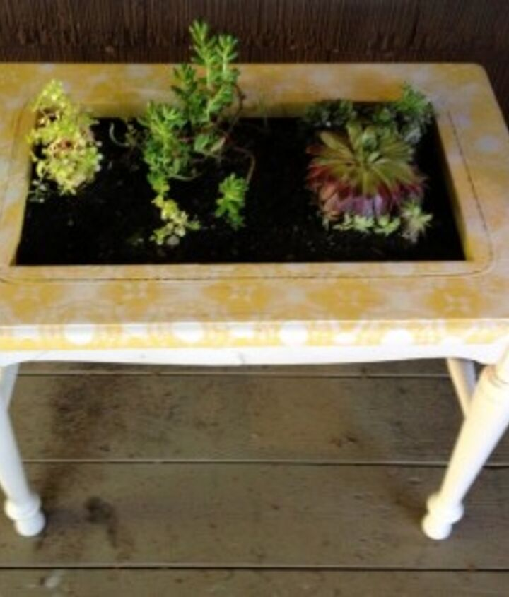 Used spray paint and dollies to stencil a pattern on the top of planter and put a screen from old window screen.