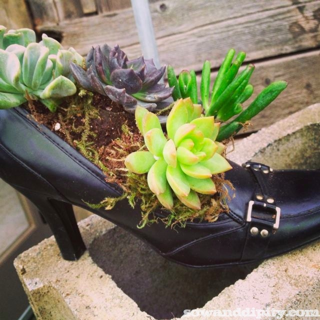 These shoes were made for planting....