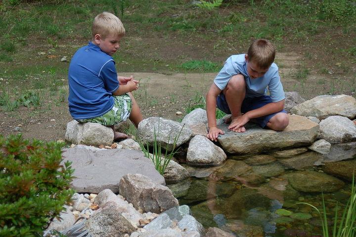 using fish feeding rocks.