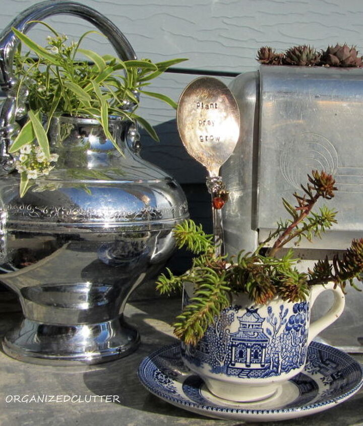 """The outdoor vignette was completed with a chrome tea pot and """"Frosty Knight"""" alyssum and a Blue Willow tea cup and Angelina sedum."""