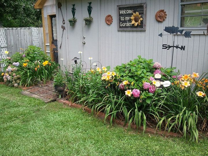 gardening in central mississippi 2013, flowers, gardening, hydrangea, outdoor living, raised garden beds, First flower bed I created when we moved 4 years ago That s my new greenhouse my husband built for me last year in the background