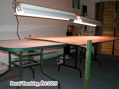 build a seedlings table with plant grow lights, diy, gardening, how to, lighting, woodworking projects, Grow table setup See how to install a grow table
