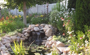 a new shady spot by the pond, gardening, outdoor living, ponds water features