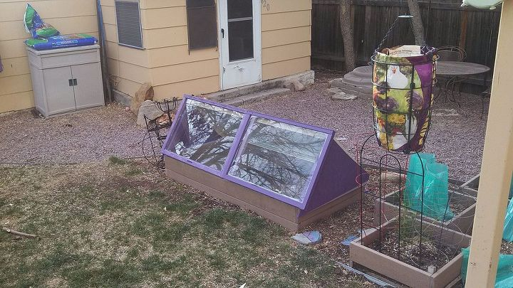 My new cold frame on my small 3x6 garden. (see my post about up cycled chicken feed bags about my hanging tomato cage you see in the pic)
